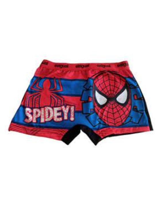 boxer spider